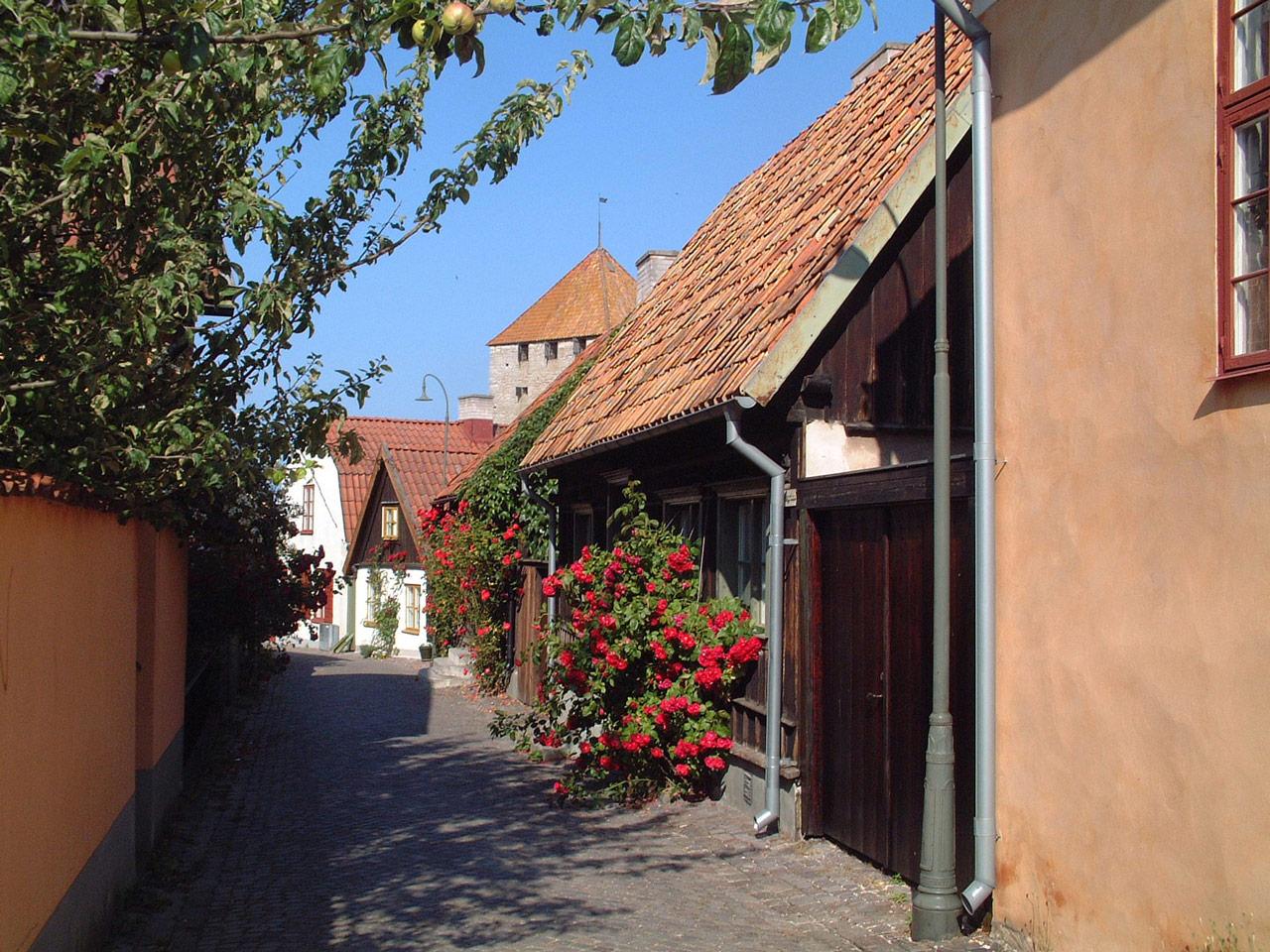 Rosornas stad Visby